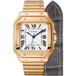 Santos De Cartier Watch WGSA0018